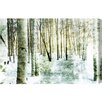 "Oliver Gal ""Vail Birch"" by Canyon Gallery Photographic Print on Wrapped Canvas"
