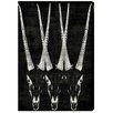 """Oliver Gal """"Antelope"""" by Canyon Gallery Graphic Art on Wrapped Canvas"""