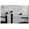 "Oliver Gal ""Birds on a Wire"" by Canyon Gallery Photographic Print on Wrapped Canvas"