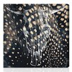 Oliver Gal Oliver Gal Ox Graphic Art on Wrapped Canvas