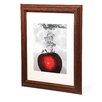 """Trademark Fine Art """"Red Apple Splash"""" by Roderick Stevens Matted Framed Graphic Art in Red"""