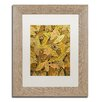 "Trademark Fine Art ""Autumn"" by Hai Odelia Framed Painting Print"