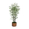 Laura Ashley Home Tall Banana Tree with Real Touch Leaves in Fiberstone Planter