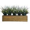 Laura Ashley Home Plastic Grass in Retangular Wooden Planter