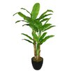 Laura Ashley Home Tall Banana Tree in Planter