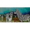 GreenBox Art 'Poppy Field of Zebras' by Eli Halpin Painting Print on Canvas