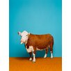 GreenBox Art 'Cow on Bright Blue' by Catherine Ledner Photographic Print on Canvas