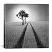 iCanvas 'Listen to Wisdom' by Ben Heine Photographic Print on Wrapped Canvas
