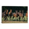 iCanvas 'Brown Horses Running' by Bob Langrish Photographic Print on Canvas