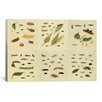 iCanvas 'Butterflies 9 Piece Plate Collection III' by Cramer and Stoll Graphic Art on Canvas
