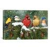 """iCanvas Decorative Art """"Backyard Birds on Snowy Branch"""" by William Vanderdasson Graphic Art on Canvas"""
