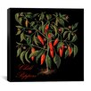 """iCanvas """"Chili Peppers"""" Canvas Wall Art by Mindy Sommers"""