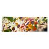 iCanvas Panoramic Chinese Tallow Leaves Photographic Print on Canvas