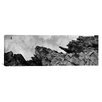 iCanvas Panoramic Birds Nesting in Cliffs, Norway Photographic Print on Canvas