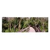 iCanvas Panoramic Boardwalk Passing Through a Forest, Lettuce Lake Park, Tampa, Hillsborough County, Florida Photographic Print on Canvas