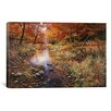 iCanvas 'Autumn Gold' by Bill Makinson Photographic Print on Canvas