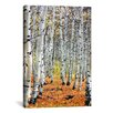 iCanvas Scenic 'Autumn in Aspen' Photographic Print on Canvas