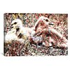 iCanvas Baby Canadian Geese Graphic Art on Canvas