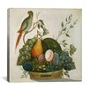 """iCanvas """"Basket of Fruit with Parrot"""" Canvas Wall Art by Jung Ho Hwang"""