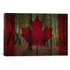 iCanvas Canadian Flag #3 Graphic Art on Canvas