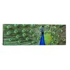 iCanvas Color Bakery Aqua Peacock (Panoramic) Photographic Print on Canvas