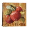 "iCanvas ""Apple Season"" Canvas Wall Art by Lisa Audit"