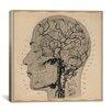 iCanvas Anatomy of Human Head Canvas Wall Art
