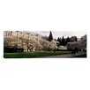 iCanvas Panoramic Cherry Trees in the Quad of a University, University of Washington, Seattle, King County, Washington State Photographic Print on Canvas