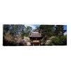 iCanvas Panoramic Cherry Blossom Trees in a Garden, Japanese Tea Garden, Golden Gate Park, San Francisco, California Photographic Print on Canvas