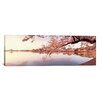 iCanvas Panoramic Cherry Blossoms at The Lakeside, Washington, D.C Photographic Print on Canvas
