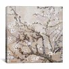 iCanvas 'Almond Branches' by Vincent Van Gogh Painting Print on Wrapped Canvas
