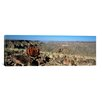 iCanvas Panoramic Aloe Growing at the Edge of a Canyon, Fish River Canyon, Namibia Photographic Print on Canvas