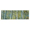 iCanvas Panoramic Aspen Trees in a Forest, Rock Creek Lake, California, USA Photographic Print on Canvas