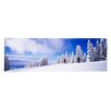 iCanvas Panoramic Steamboat Springs, Colorado Photographic Print on Canvas
