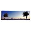 iCanvas Panoramic Palm Trees at Dusk, San Francisco, California Photographic Print on Canvas