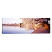 iCanvas Panoramic Tidal Basin, Washington D.C, District of Columbia Photographic Print on Canvas