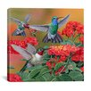 """iCanvas """"Hummingbirds and Flowers"""" Canvas Wall Art by William Vanderdasson"""