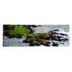 iCanvas Panoramic Pebble Beach Golf Links, Pebble Beach, California Photographic Print on Canvas