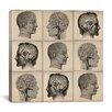 iCanvas Cartography Human Head Anatomy Collage Graphic Art on Canvas