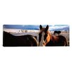 iCanvas Panoramic Horses in a Field, Montana Photographic Print on Canvas
