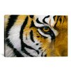 iCanvas 'Eye of the Tiger' by Lucie Bilodeau Photographic Print on Canvas