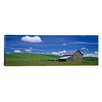 iCanvas Panoramic Cows and a Barn in a Wheat Field, Washington Photographic Print on Canvas