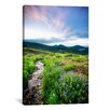 iCanvas 'Crested Butte Stream' by Dan Ballard Photographic Print on Canvas