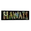 iCanvas 'Hawaii Alphabet' by David Russo Painting Print on Canvas