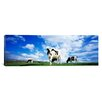 iCanvas Panoramic Cows in Field England, United Kingdom Photographic Print on Canvas