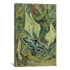 iCanvas 'Emperor Moth' by Vincent van Gogh Painting Print on Canvas