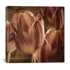 """iCanvas """"Copper Tulips"""" Canvas Wall Art by Mindy Sommers"""