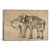 iCanvas Cartography 'Comparative View of the Human and Elephant Frame' by Benjamin Waterhouse Hawkins Graphic Art on Canvas