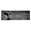iCanvas Panoramic Eagle over Water Photographic Print on Canvas