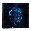 iCanvas Cygnus Loop Nebula (Galaxy Evolution Explorer) Canvas Wall Art
